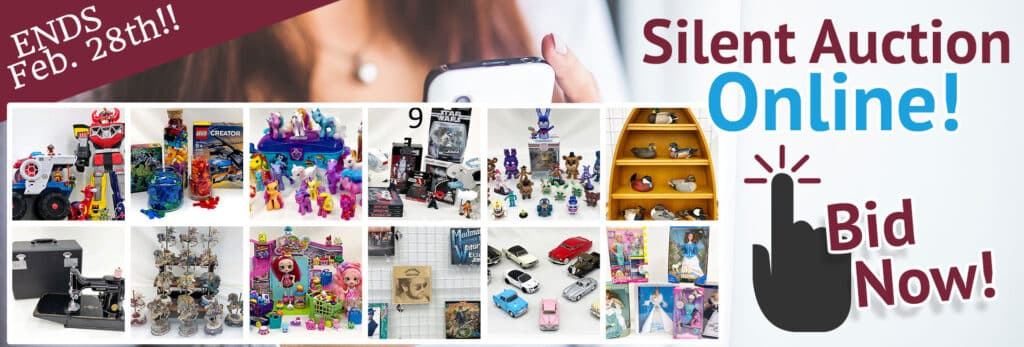 SVDP February 2021 Silent Auction. Items brands include My Little Pony, Shopkins, Imaginext, Singer sewing machine, Elton John vinyl records & more!